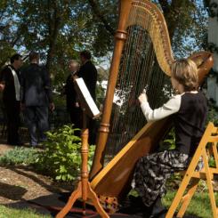 Harpist_graysmill